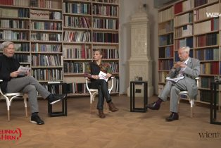 Pelinka mit Hirn_Video_Interview_W24 TV_20210615_screenshot